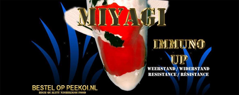 Miyagi Immuno Up Bestellen
