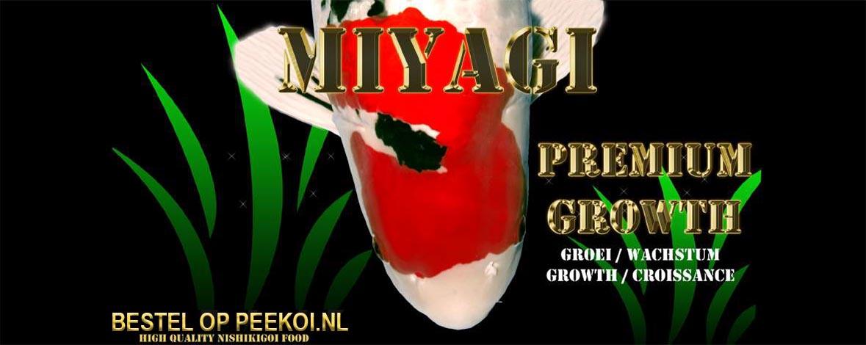 Miyagi Premium Growth bestellen