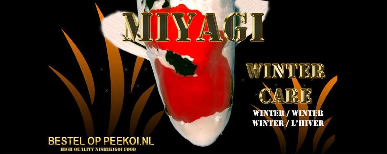 Miyagi Winter Care