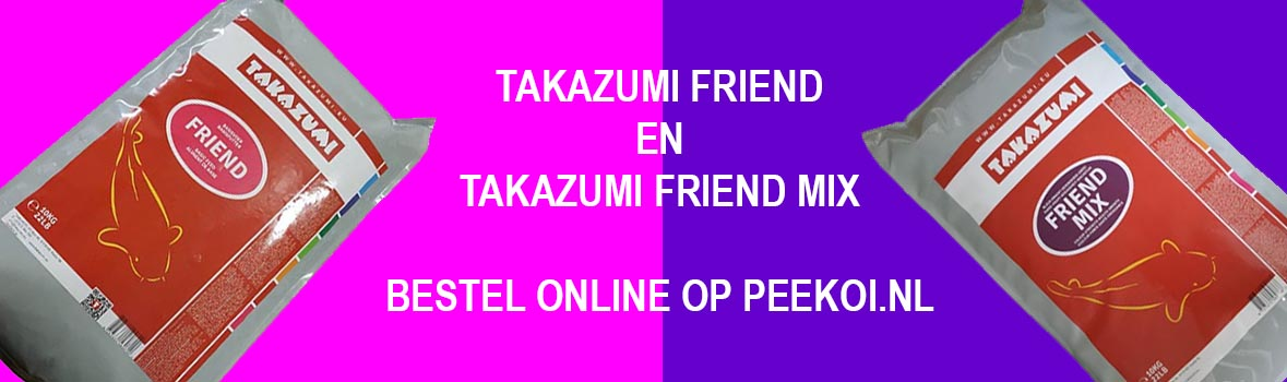 Takazumi Friend en Takazumi Friend Mix