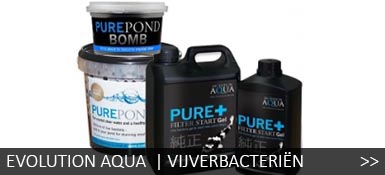 Evolution Aqua bacterien