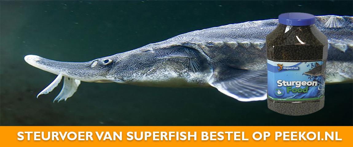 Steurvoer van Superfish