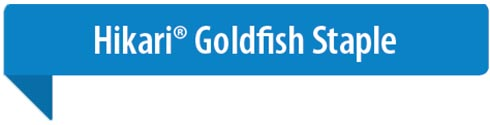 Hikari Goldfish Staple kopen