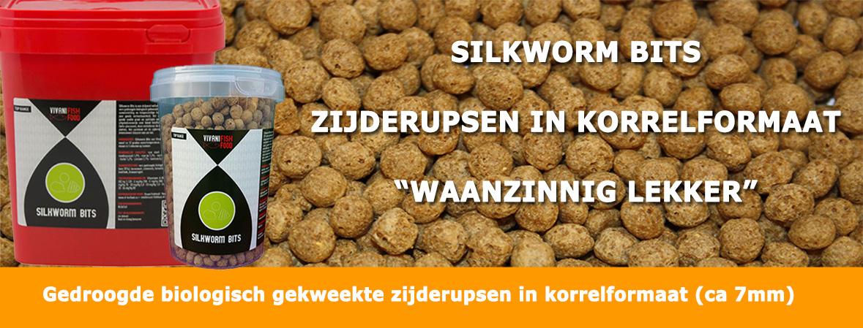 Silkworm Bits